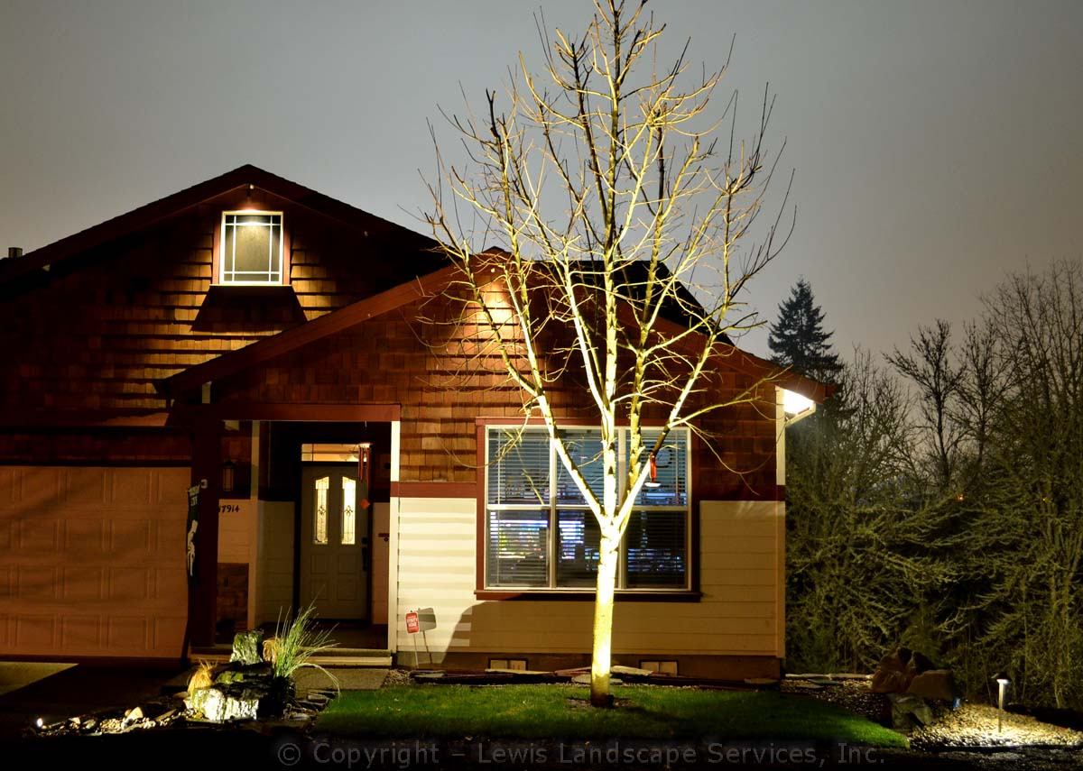 Outdoor-landscape-architectural-lighting-byers-project-early-2014 001