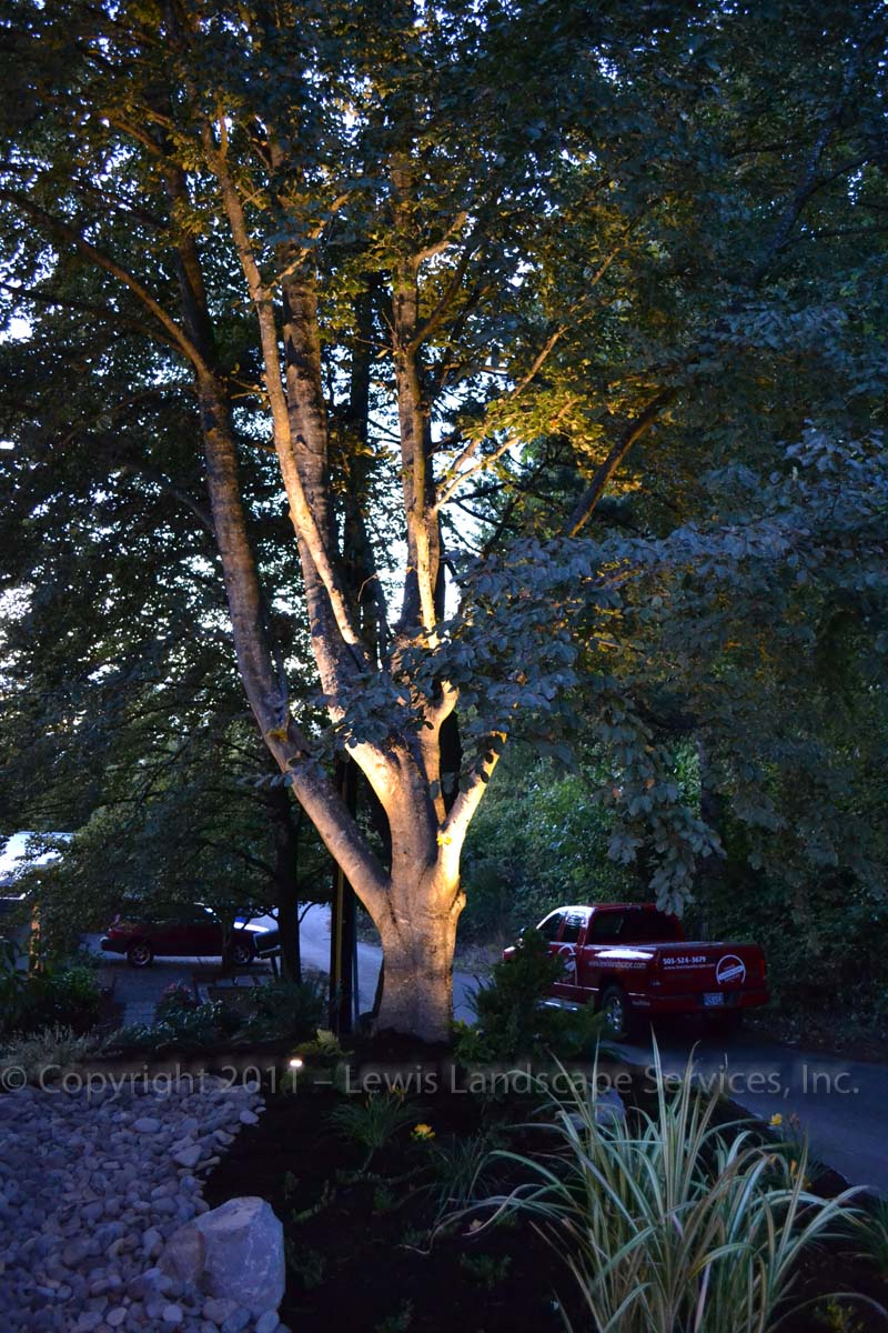Outdoor-landscape-architectural-lighting-harris-project-fall-2011 006