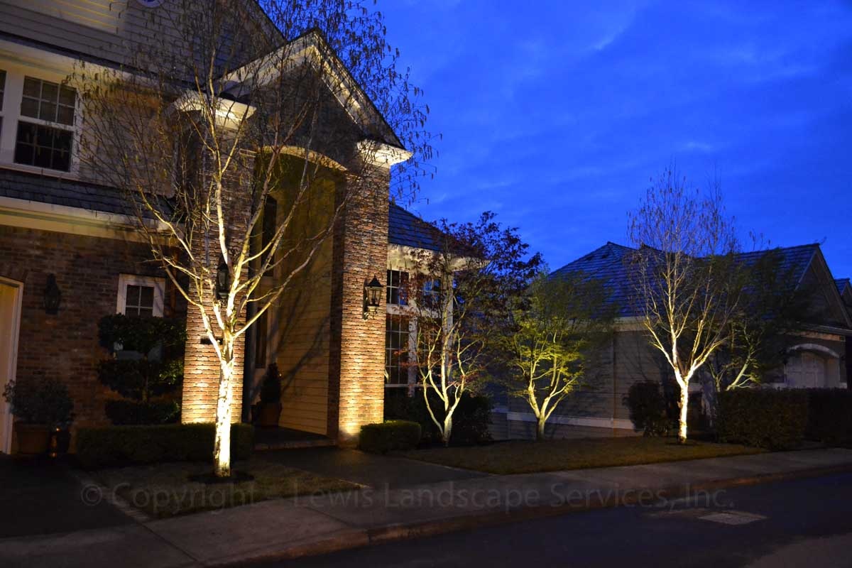 Outdoor-landscape-architectural-lighting-march-project-spring-2012 002
