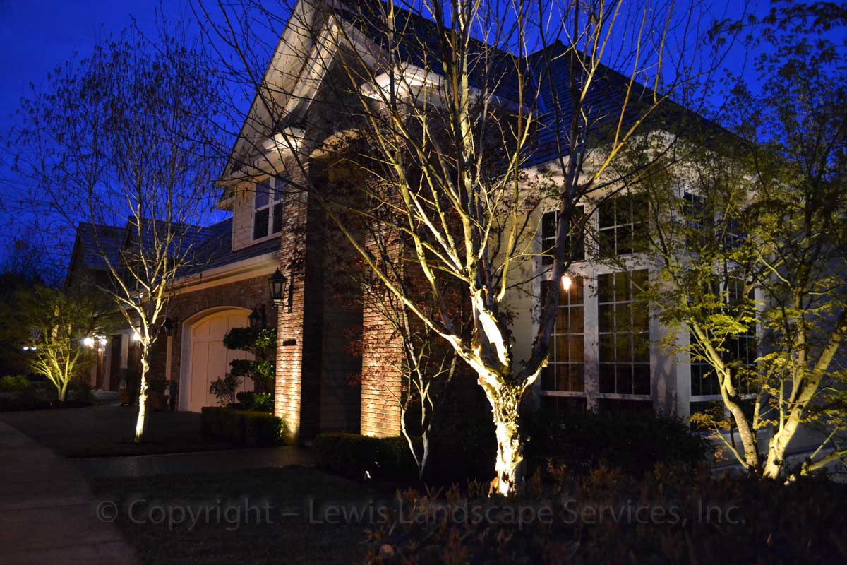 Outdoor-landscape-architectural-lighting-march-project-spring-2012 007