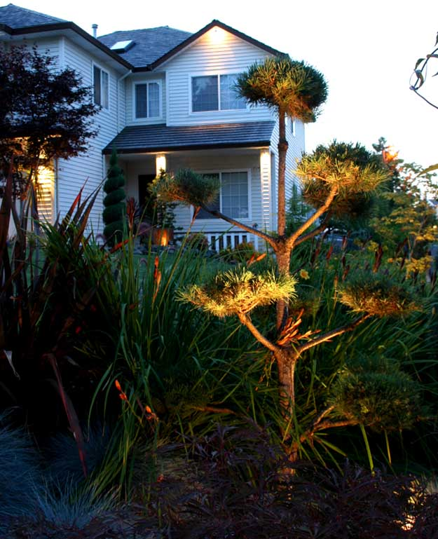 Outdoor-landscape-architectural-lighting-outdoor-lighting-project-in-beaverton-fall-2007 015