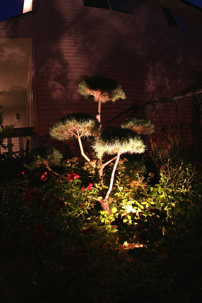 Outdoor-landscape-architectural-lighting-outdoor-lighting-project-in-beaverton-fall-2007 018