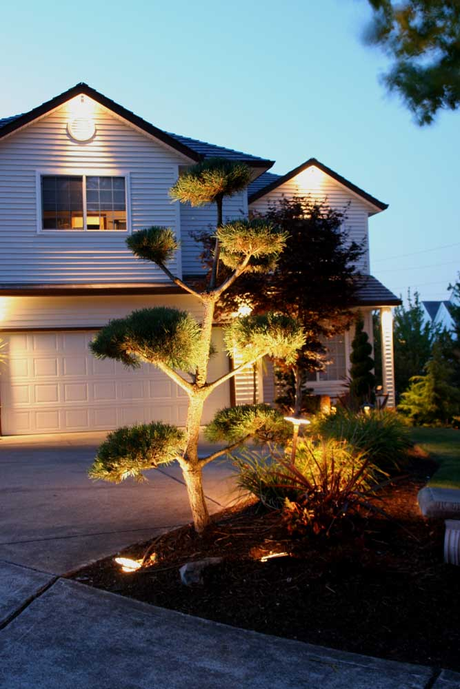 Outdoor-landscape-architectural-lighting-outdoor-lighting-project-in-beaverton-fall-2007 019