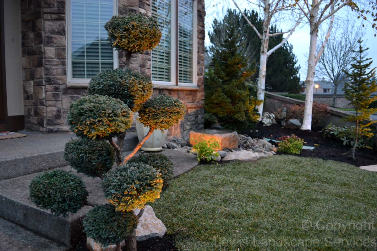 Outdoor-landscape-architectural-lighting-rocha-project-fall-2013 004