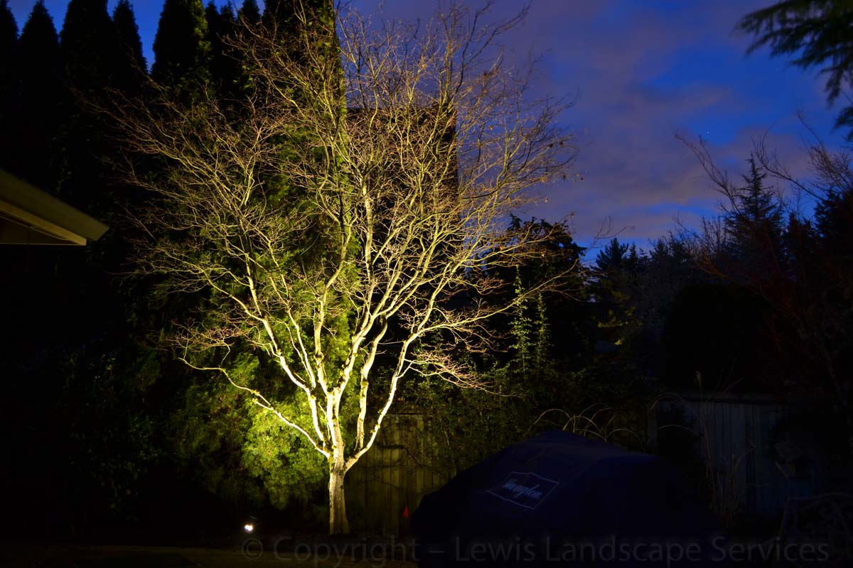 Outdoor-landscape-architectural-lighting-stuver-project-winter-2013 005