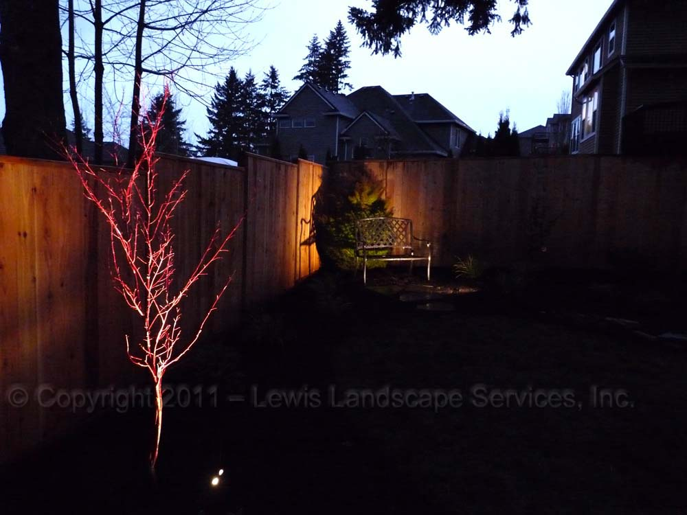 Outdoor-landscape-architectural-lighting-tualatin-project-spring-2011 005