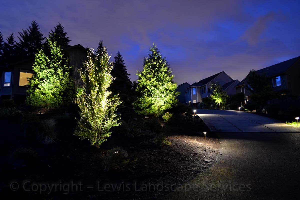 Outdoor-landscape-architectural-lighting-wright-project-summer-13 010