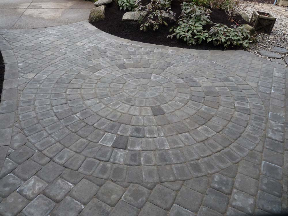 Paver Patio/Walkway Area