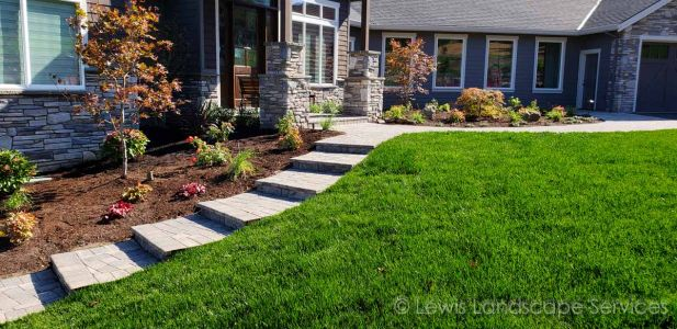 New Sod Lawn, Plants, Trees, Paver Pathways/Steps