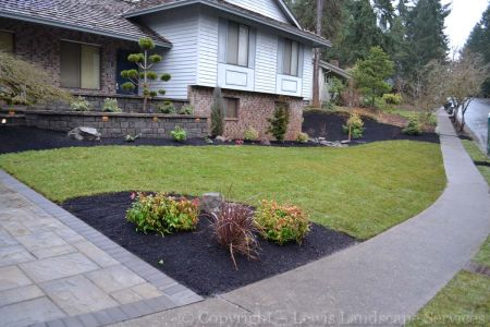 Winter 2015 - Front Yard - New Paver Driveway, New Wall / Front Porch, New Sod Lawn, New Plants