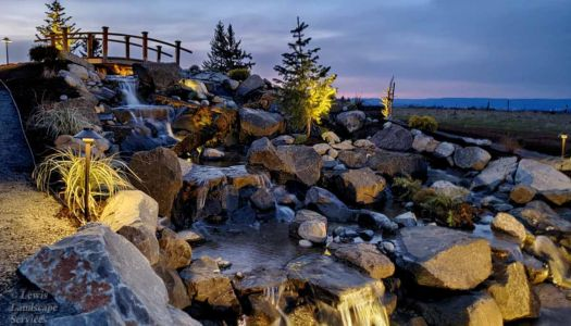 Large Waterfall & Pond in Back Yard with Planting & Night Lighting