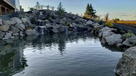 Large Waterfall & Pond We Built in Hillsboro