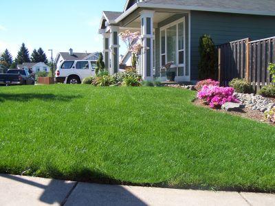 Yards We Maintain