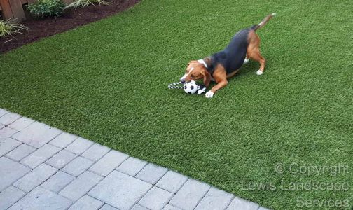 Synthetic Turf Installation