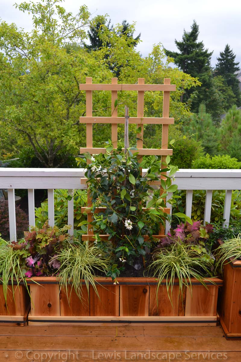Various-options-for-raised-beds-garden-boxes-pre-made-planters 003