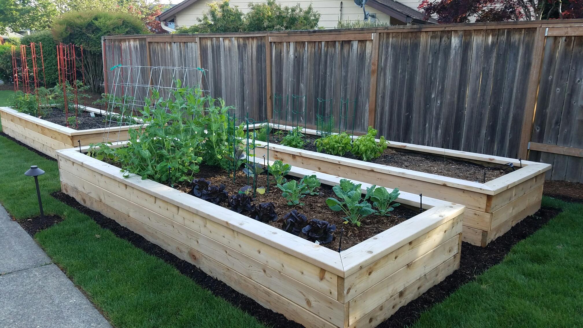 Cedar Raised Beds Garden Box from Installation we did in Beaverton, Oregon