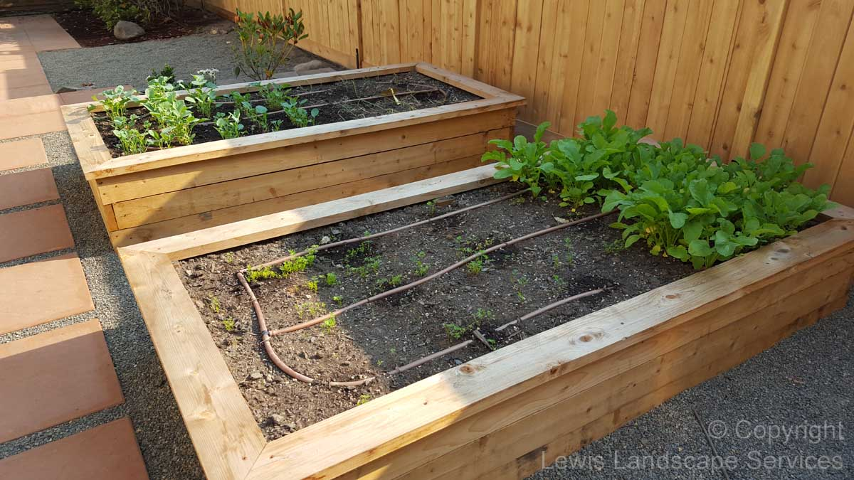 Cedar Raised Beds Garden Box from project we did in Portland, OR